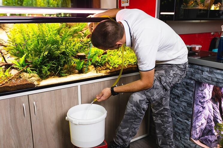 Cleaning A 75 Gallon Aquarium