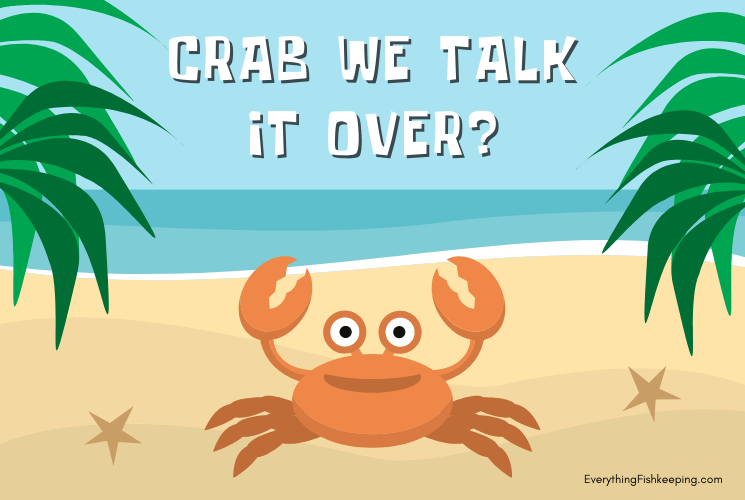 Crab Pun